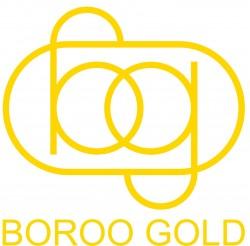 Boroo Gold Company