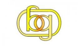 Boroo Gold